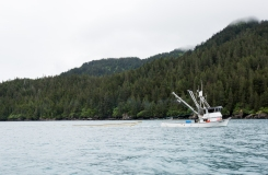 Boats (4)