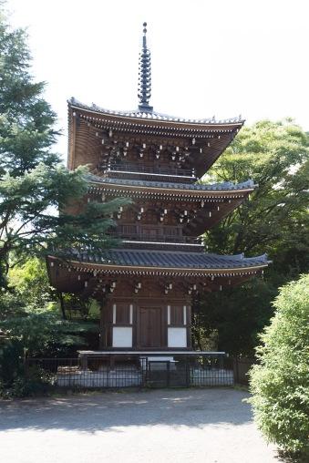 Tozenji Temple (2)