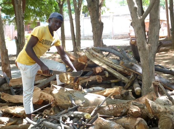 Wood Chopping (2)